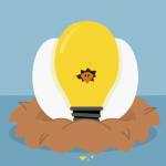 voorbeelden van sociale innovatie - de couveuse